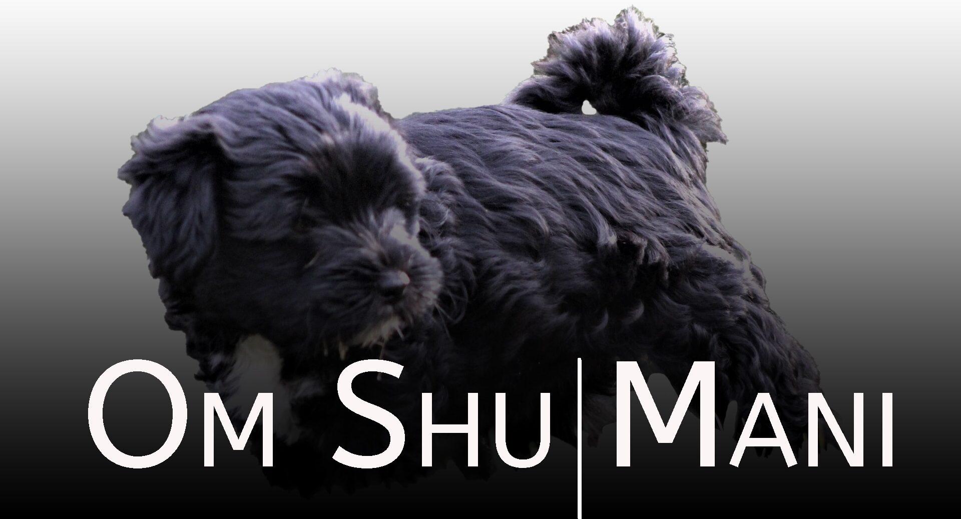 Om Shu Mani